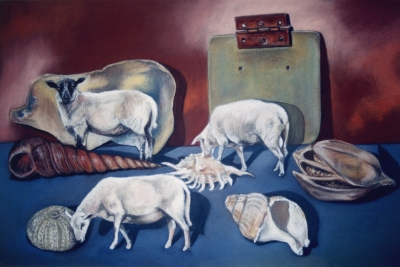 SHEEP AND SHELLS
