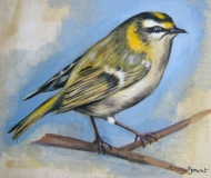 Gold Crest | Oil On Canvas Paper | SOLD