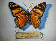 Butterfly | Oil on Watercolour Paper | SOLD