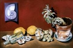 Nautilus Still Life | Pastel | SOLD